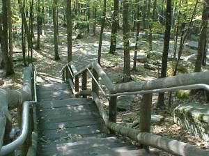 photo courtesy of http://www.theallegheny.com/hiking2.html