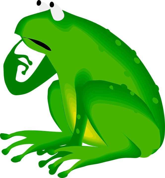frog-48234_960_720